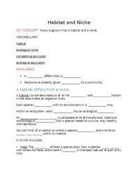 habitat and niche activity sheet answers habitats and niches teaching resources teachers pay teachers