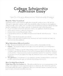 Format For College Essays A Essay Example Admission Examples