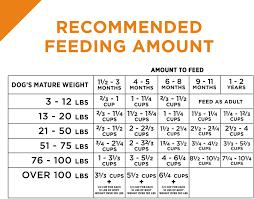 Purina Pro Plan Savor Puppy Shredded Blend With Probiotics Chicken Rice Formula Dry Dog Food 6 Lb Bag