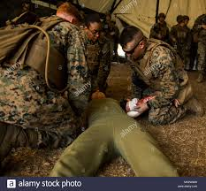 Combat Corpsman A Navy Corpsman With Combat Logistics Battalion 8 2nd