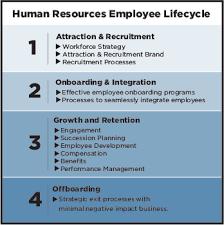 Employee Chart Talentera Inc Aligning People
