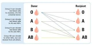 parent blood types chart how to know your blood type ways to be sure