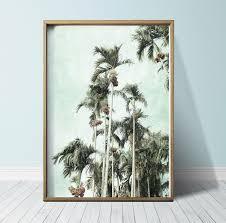 photography print palm tree wall art palm tree print palm tree art tropical print tropical wall on tropical wall art uk with photography print palm tree wall art palm tree print palm tree art