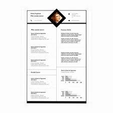 Computer Programs List For Resume Elegant Apple Pages Resume