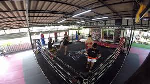 attachai muay thai gym pads
