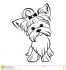 Chihuahua And Yorkshire Terrier Cross Puppy Wiring Diagram Database