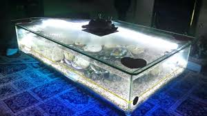 fishtank coffee tables fish tank coffee table into the glass awesome interior fish tank coffee fishtank coffee tables