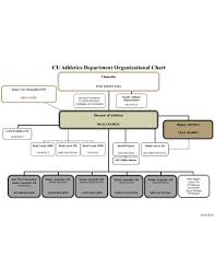 Chicago Department Of Public Health Organizational Chart 22 Department Chart Templates In Google Docs Word Pages