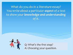 year how to write a literature essay ppt video online  what do you do in a literature essay