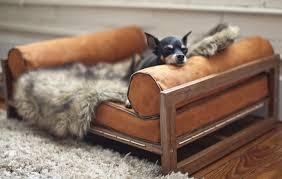 pets furniture. Design Pets Furniture -