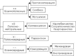 Виды взаимоотношений в экосистеме Реферат Если в качестве главного критерия взаимодействия принять влияние численности одних организмов вида популяции группы на численность других то окажется