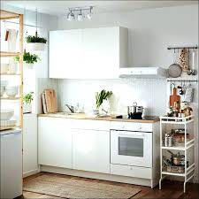 Apartment Kitchen Design Ideas Pictures Amazing Kitchenette Size Ottocodeemperor