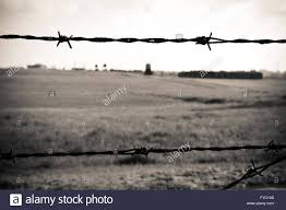 barbed wire fence concentration camp.  Concentration Barbed Wire Fence In Concentration Camp Majdanek Poland For Barbed Wire Fence Concentration Camp R
