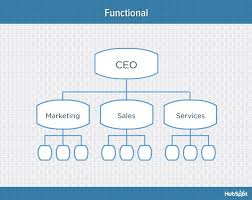 Types Of Organizational Chart In Management 9 Types Of Organizational Structure Every Company Should
