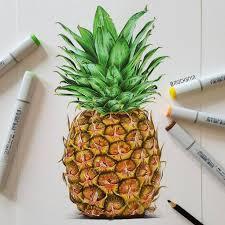 pineapple drawing tumblr. pin drawn pineapple basic #2 drawing tumblr s