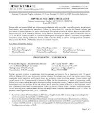 government resume example cv resume federal government resume samples