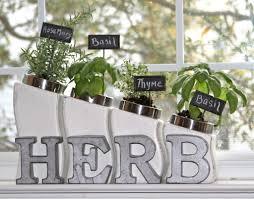 Indoor Kitchen Herb Garden Diy Kitchen Canister Indoor Herb Garden The Chelle Project