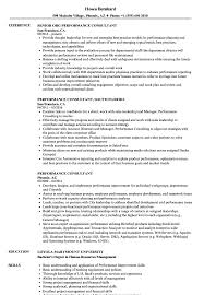 Business Consultant Job Description Resume Performance Consultant Resume Samples Velvet Jobs 21