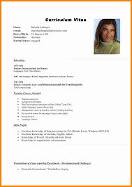 English Curriculum Vitae 15 Curriculum Vitae English Format Receipts Template