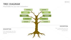 tree diagram powerpoint tree diagram powerpoint template