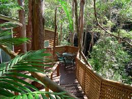 Treetops Montville 2017 Prices Reviews U0026 Photos  Ranch Treehouse Montville