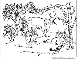 Small Picture coloring pages animals southwestern us Google Search Native