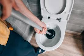 Toilet Pumper How To Unclog A Toilet Without A Plunger Readers Digest