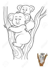 coloring book for children koala stock photo 70382331