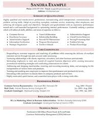 Performance Profile Resumes Resume Profile Examples Elegant Career Resume Service Yeniscale