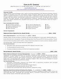 Digital Marketing Resume Sample Awesome Sales And Marketing Resume Sample Beautiful Digital Marketing Resume