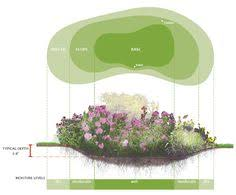 Small Picture A roadside rain garden that stores stormwater and allows it to