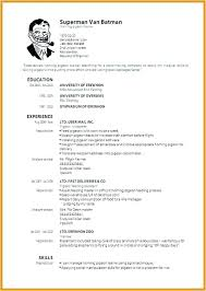 How To Make Resume Online Best Ideas About Free Resume Format On