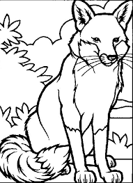 Small Picture Stylish Inspiration Real Animal Coloring Pages Wildlife Coloring