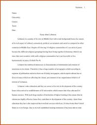 a essay about love hero
