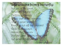 Butterfly Quotes Magnificent ButterflyQuotes48 The Tough Cookie