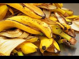 Image result for free pics of fruit rinds