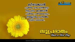 Malayalam Love Good Night Quotes T