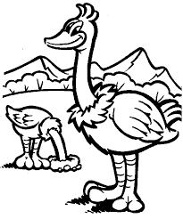 Small Picture Ostrich coloring page Animals Town animals color sheet