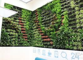 thessaloniki vita verde living wall