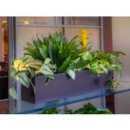 office planter. Vista Metallic Rectangle Planter Office