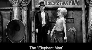 norman holland on david lynch s the elephant man the elephant man