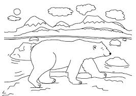 Small Picture Beautiful Baby Arctic Animals Coloring Pages Pictures Coloring