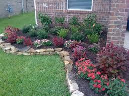 flower bed plants