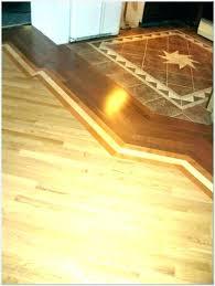 vinyl plank flooring transition to carpet