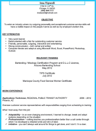 Pleasant Online Resume Templates Word On Template Free Doc