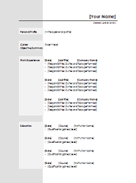 Standard Resume Template 21 Standard CV Template