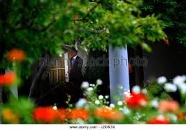 oval office july 2015. president barack obama leaves the oval office to board marine one on july 15 2015 a