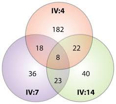 Venn Diagram Bioinformatics A Venn Diagram Depicts The Number Of Variants After Bioinformatics