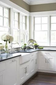 White Kitchen Cabinets With Sinks - Edina