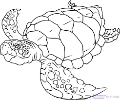Ocean Coloring Page Free Ocean Coloring Pages Ocean Coloring Pages